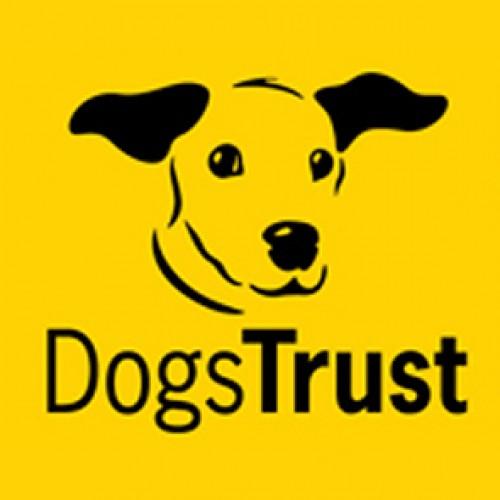 Dogs Trust Shrewsbury to host Christmas Fair this Sunday