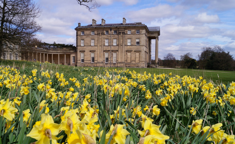 Attingham Park at Easter