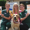 Dog Show entrant Abe the Golden Labrador and show helper Kathryn Holloway, with Heather Sydenham and Catrin Sanderson of Severn Edge Veterinary Group.