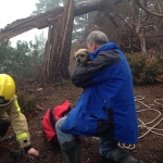 Firefighters rescue Mr Keogh and Fenn the Border Terrier. Photo: SFRS