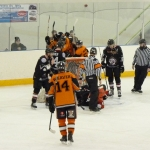 Tigers on the ice during their last home game against Basingstoke Bison