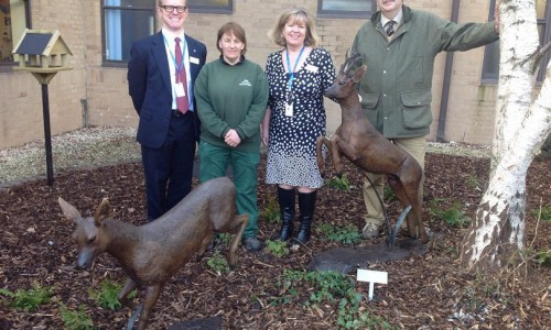Patients' memory garden opens at Princess Royal Hospital