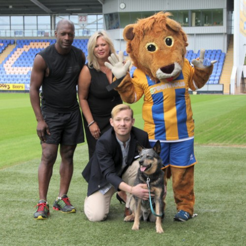 Stars head to Shrewsbury for charity football match