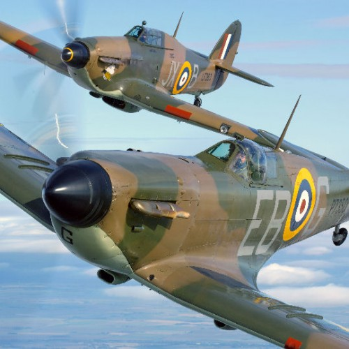 RAF ask for help in creating commemorative Battle of Britain mosaic