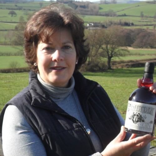 Shropshire drinks company given a stamp of excellence for its damson gin