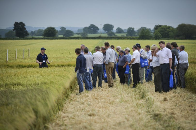 Farmers at this year's Arable Event will debate the pros and cons of a possible Brexit as well as view seed trial plots