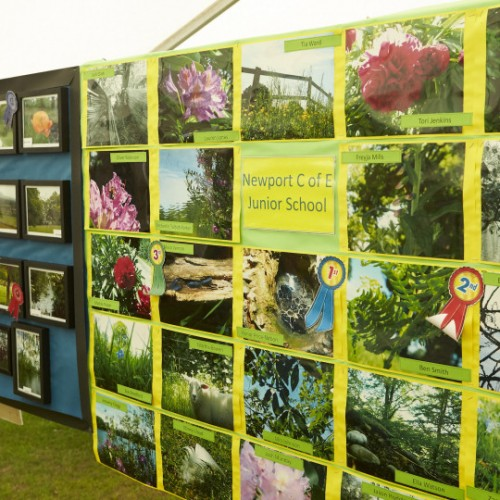 Newport Show puts children in the picture in photography competition