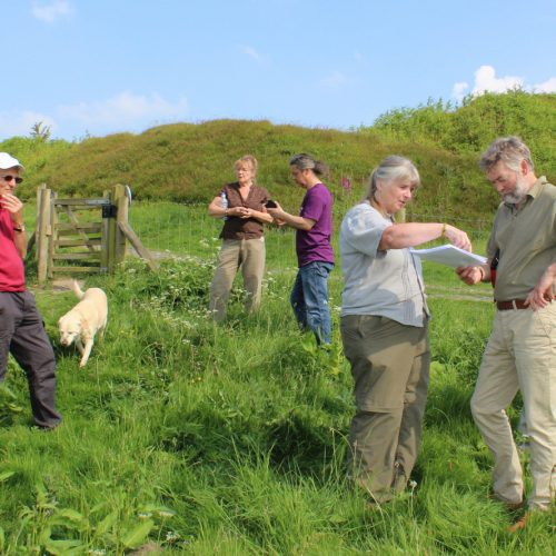 Hugs turn into a helping hand with Old Oswestry' hillfort conservation