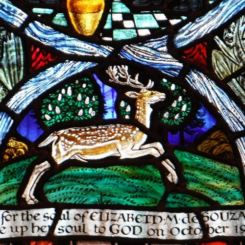 Life and works of Shrewsbury-born stained glass artist to be celebrated in new exhibition