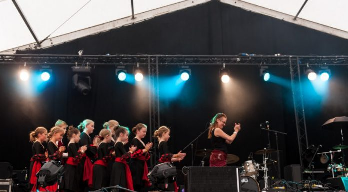Children from Shropshire schools in the Helping Hands, Dancing Feet performance at Shrewsbury Folk Festival