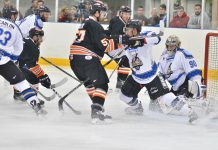 Tigers in action on the ice/ Photo: Steve Brodie