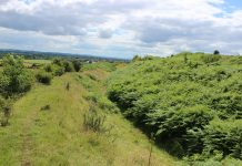 Volunteers can get involved with landscape maintenance at Old Oswestry hillfort. Photo: HOOOH