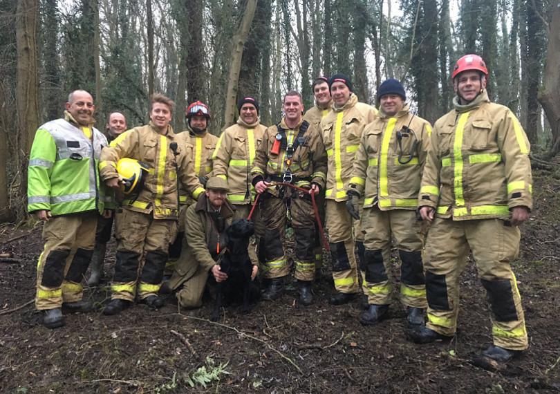 Rescue Dog Shropshire