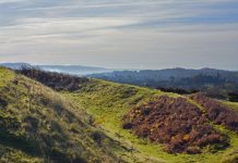 Old Oswestry hillfort. Photo: Graham Mitchell