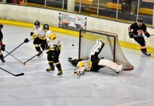 Telford forward Milan Kolena looks on as the Bees netminder makes a spectacular save. Photo: Steve Brodie