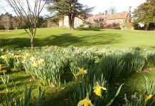 Dudmaston Hall in springtime