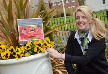 Barratt Homes' Sales Adviser Dominique Gerrett with some bee friendly plants