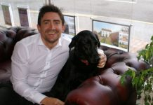 Max the Labrador at Harwood The Estate Agent