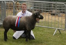 Agricultural students are being invited to apply for a scholarship being offered by the organisers of Newport Show