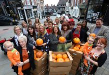 Traders have took delivery of around 100 pumpkins from Shrewsbury's Pomona Grocery so they can be sculpted