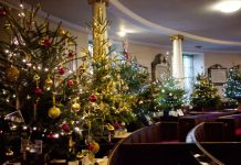 Over 50 trees are on display at the Christmas Tree Festival. Photo: St Chad's Church
