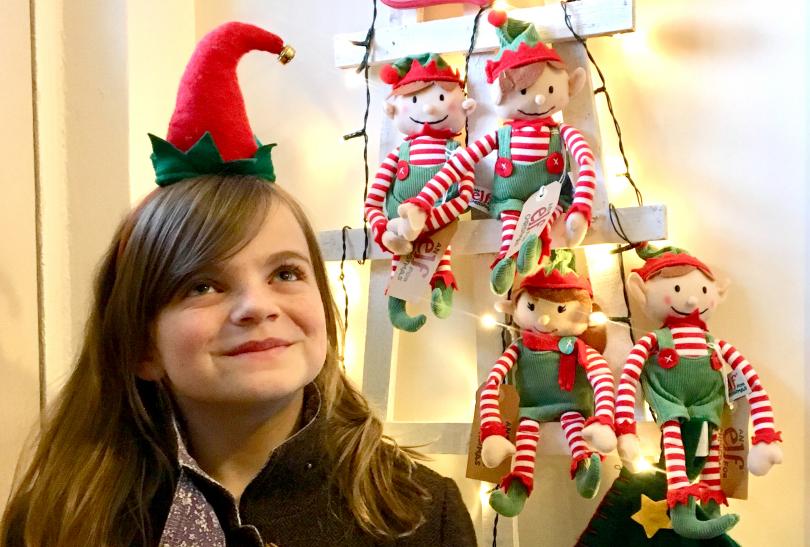 A dozen elves are hiding out in Shrewsbury town centre