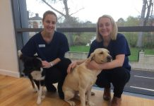 Two of Animal Trust's new vets Hannah and Frankie with their pets