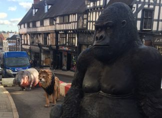 Six life-sized fiberglass animals have been placed on Wyle Cop