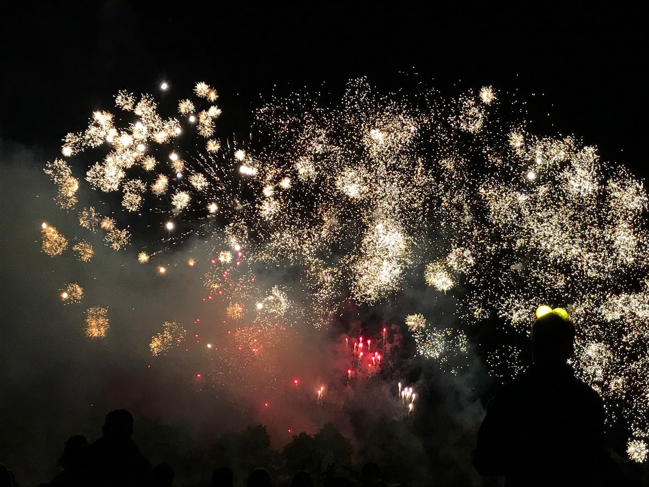 A stunning firework display, will wrap the Show up on both nights
