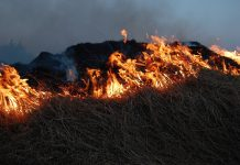 The hot dry weather brings a danger of fires breaking out on grassland and heathland