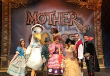 The stars of Mother Goose take to the Theatre Severn stage