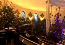 Over sixty trees are on display at the year's festival