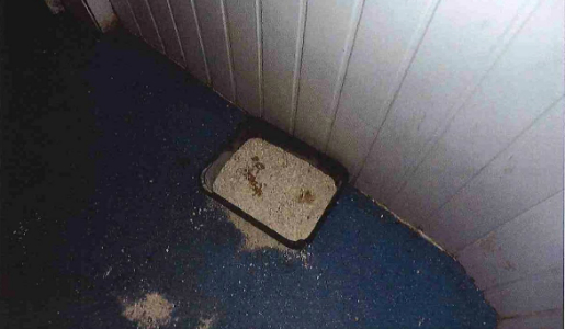 A cat litter tray seen inside the premises. Photo: Telford & Wrekin Council