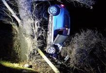 The car ended up resting against a tree and hedge following the collision. Photo: @OPUShropshire