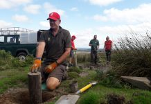 Volunteers working on the Long Mynd. Photo: National Trust