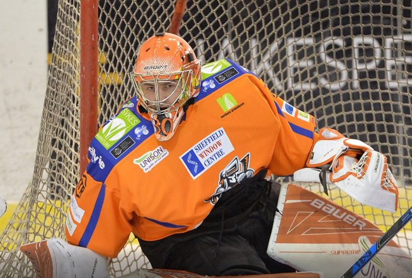 Bradley Day has joined Telford Tigers for the new season. Photo: Sheffield Steelers