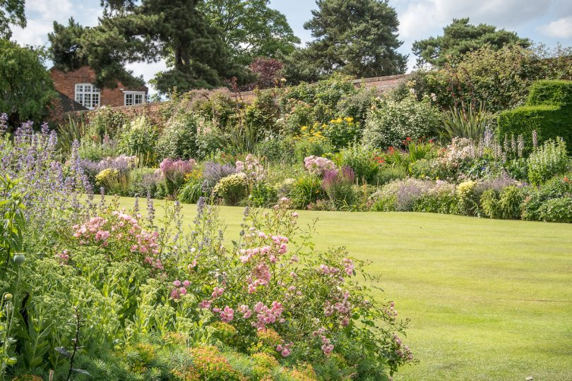 The tiered herbaceous borders – a safe haven for many perennials and delicate plants