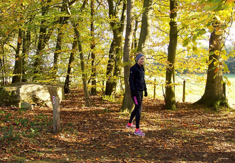Runners are invited to enjoy a route through Dudmaston's stunning woodland. Photo: ©National Trust / Natalie Kemp