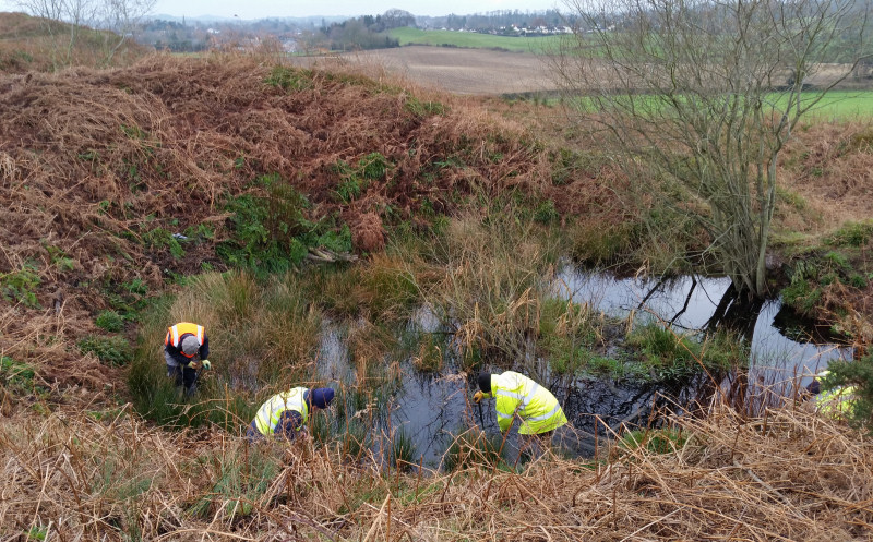 Volunteers from the Oswestry Heritage Gateway working on the hillfort ponds