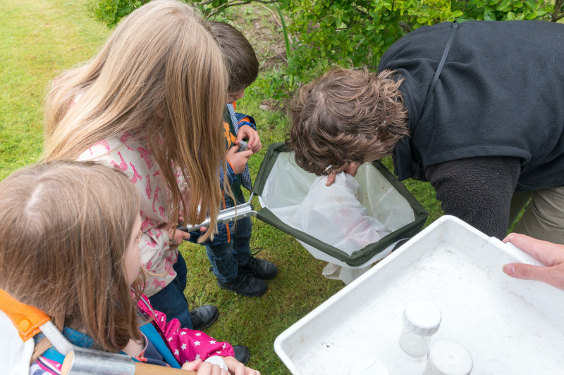 Caption: FSC and Encounter Edu team up to provide live fieldwork lessons
