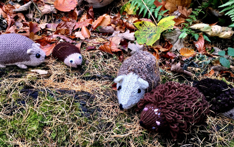 Volunteer knitters are being sought to create creatures for the annual 'Woollen Woods' display. Photo: National Trust/Julianne Hatton