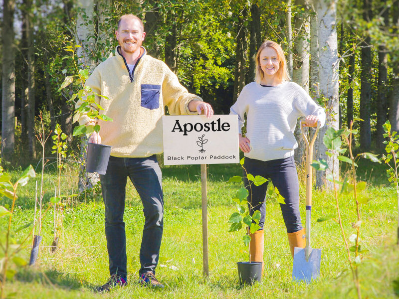 Jon and Peggy plant Black Poplar trees in the forest around the roastery in south Shropshire